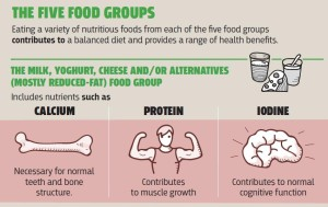 Dairy benefits